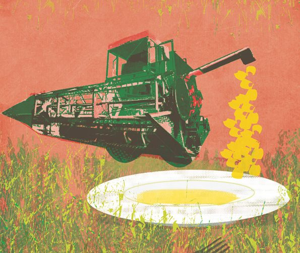 Illustration: a combine harvester dropping produce onto a place