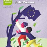 Stress Tests: The European Project Under Pressure