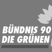 Green European Journal - Bundis 90/Die Grünen