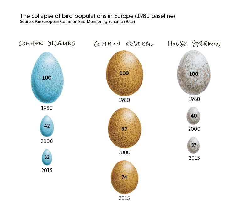 The collapse of bird populations in Europe